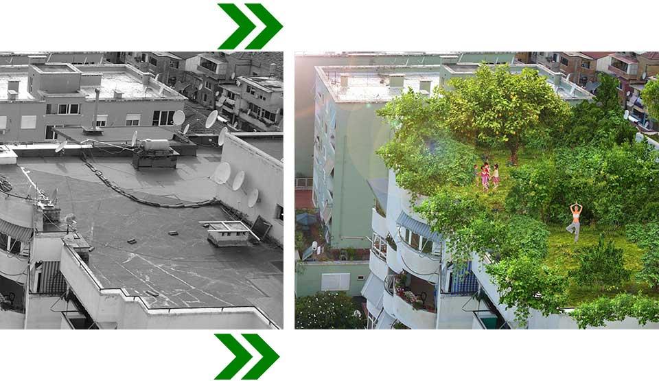 tirana-junglecity-balcony