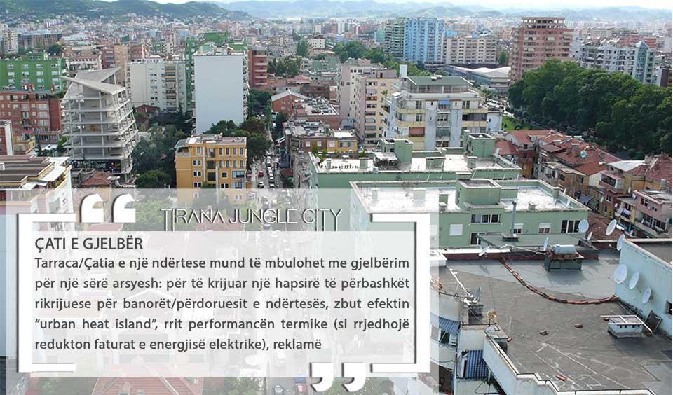 tirana-junglecity-cati-e-gjelber-1